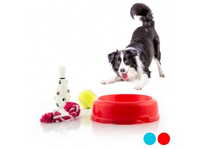 Conjunto de Brinquedos para Cães 4 Peças