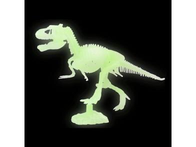 Esqueleto Fluorescente 117287